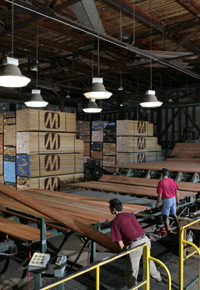 dried lumber grading