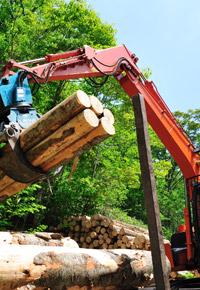 logging truck claw