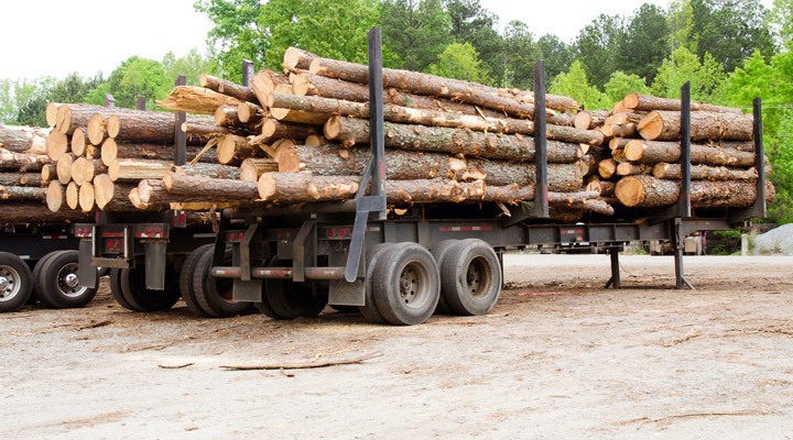 lumber log trucks