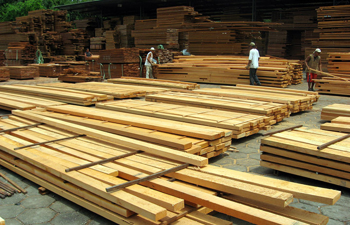 Teak lumber yard